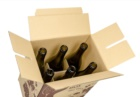 6 bottiglie con alveare interno 02-scont